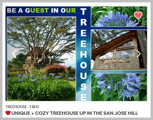 2019%2002%2010_Treehouse